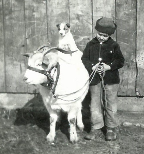 1925 billy the goat and bob the dog